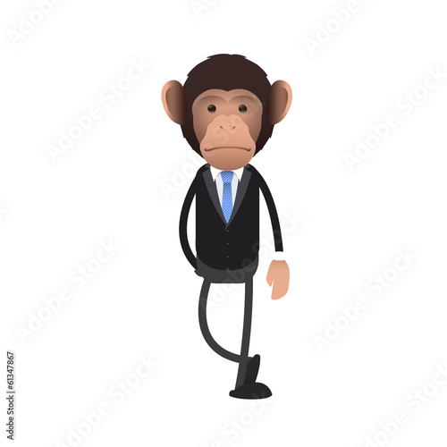 Young business monkey over white background