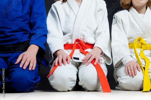 Papiers peints Individuel Judo
