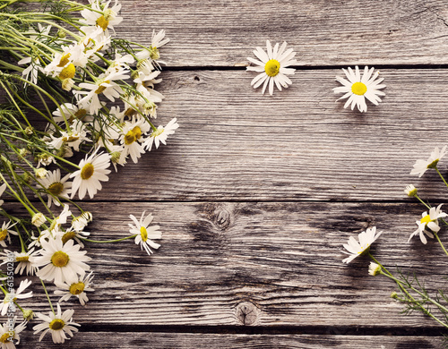 chamomiles on wooden background