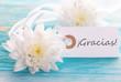 Tag with Gracias