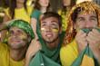 Brazilian sport soccer fans looking at the screen.