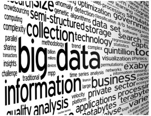 """BIG DATA"" Tag Cloud (information technology computing society)"