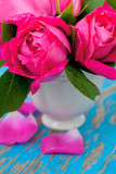 pink roses on blue wooden surface