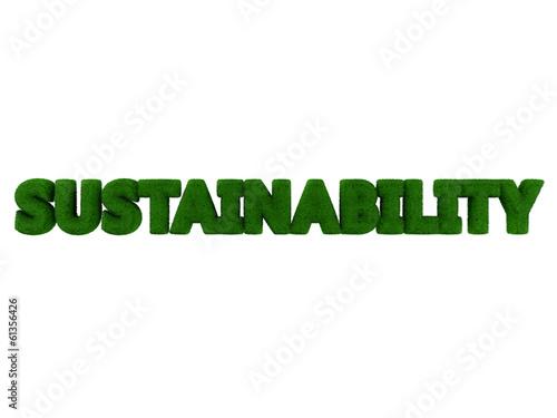 Sustainability word isolated on white background