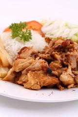 Tavuk Doner Porsiyon/ Chicken Shawarma