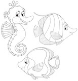 Coral fishes and seahorse