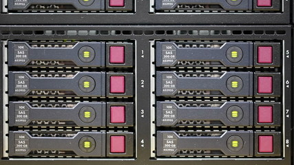 Hard Drive Array on Rack Server