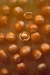 Hazelnuts on the table in rays of sunlight