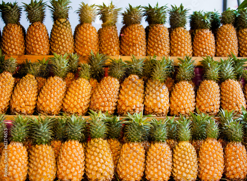 Fresh pineapple  for sale.