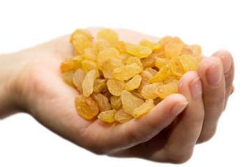 golden raisins in hand on white background