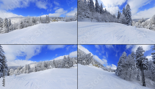 a snowy winter landscape in black forest with fir trees around