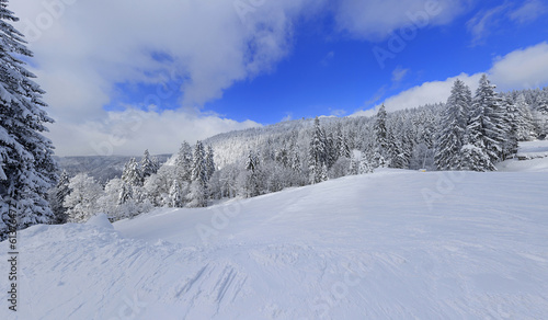 snowy winter landscape in black forest germany 9