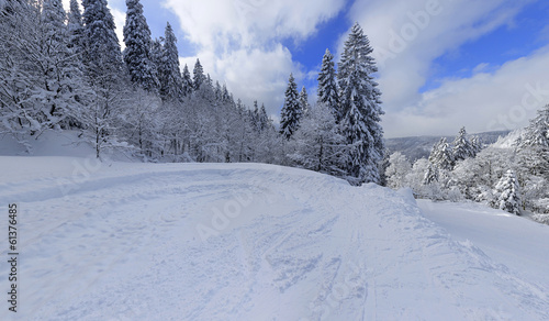 snowy winter landscape in black forest germany 8