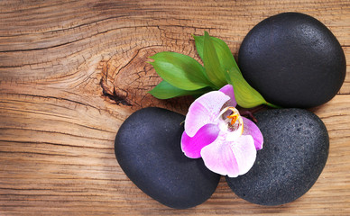 Zen pebbles. Spa Stones and Pink Orchid Flower with Green Leaves