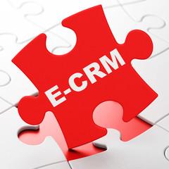 Business concept: E-CRM on puzzle background