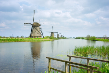 dutch windmills in summer day
