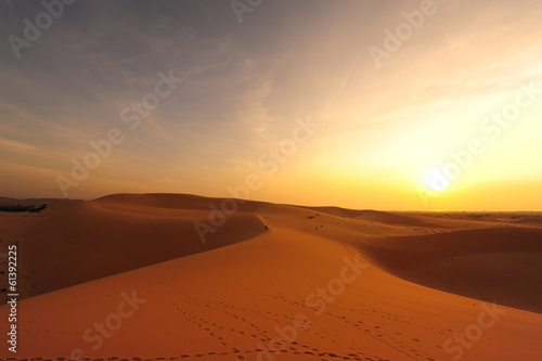 Sand Dune in Desert Landscape at Sunrise