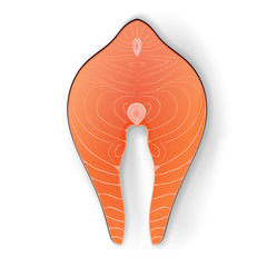 Vector illustration of a piece of salmon meat