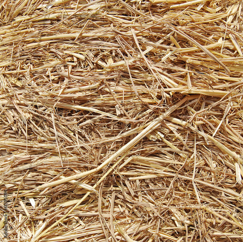 thatch,Close up straw background.