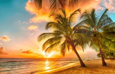 fototapeta Barbados zachód słońca
