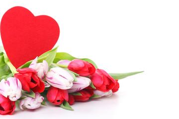 Tulpen und rotes Herz, isoliert auf weiß