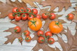 Tomatoes on the autumn leaves on a wooden table