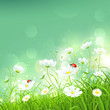 Natural background with flowers. Vector
