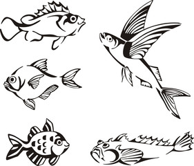 Set of black and white fish