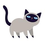 Cute kitten - 61404876