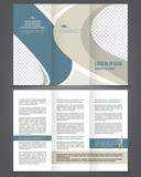 Vector empty trifold brochure template design poster
