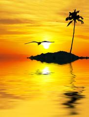 amanece sobre el mar tropical