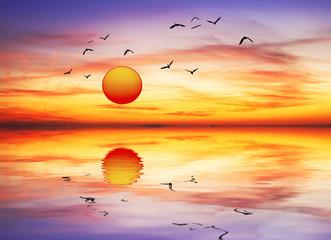 amanece de colores