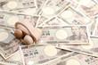 お金とエコカー