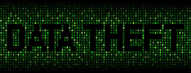 Data Theft text on hex code illustration