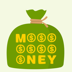 bag of money on green background