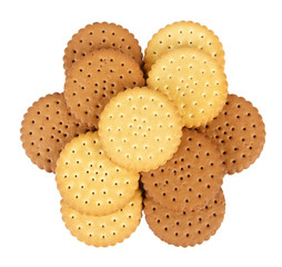 Group of round biscuits