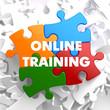 Online Training on Multicolor Puzzle.