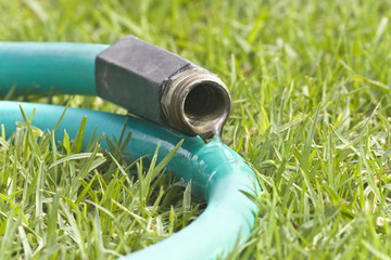Leaking garden hose on the lawn.