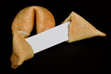 Fortune cookies plain