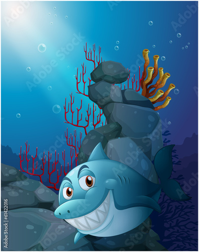 A smiling shark under the sea near the rocks