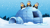 Three penguins above the igloo