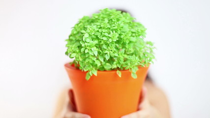 Woman with beautiful smile showing fresh basil in a pot