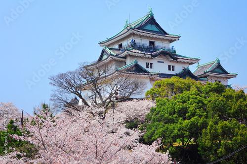 Japanese castle in wakayama - 61425807