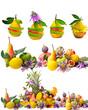 Vitaminreiche, bunte Früchte :)