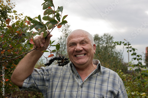 man in chokeberry plant