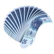 50 PLN fan