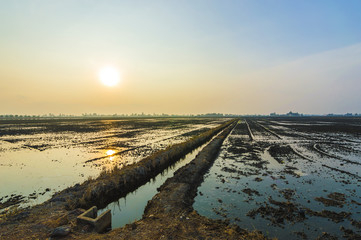 Sunrise and reflection at water paddy field