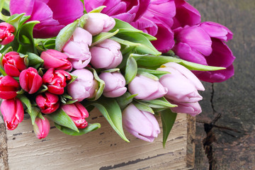 Tulpen in Holzkiste