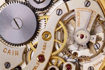 Inside of a Pocket Watch
