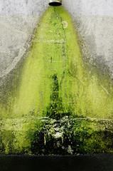 Hintergrund Wand mit Wasserschaden